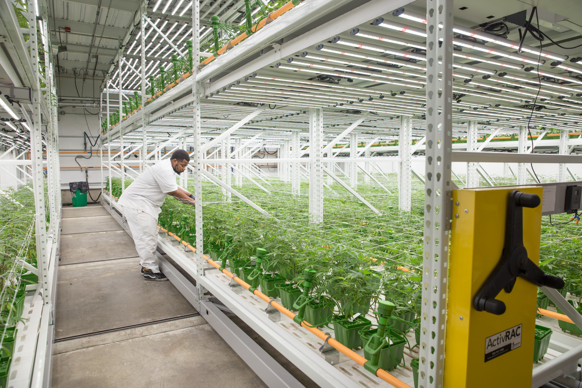 Cannabis Cultivation Grow Facility utilizing ActivRAC Mobile System